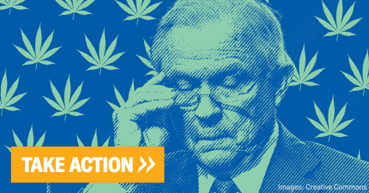Jeff Sessions on blue background with marijuana leaves