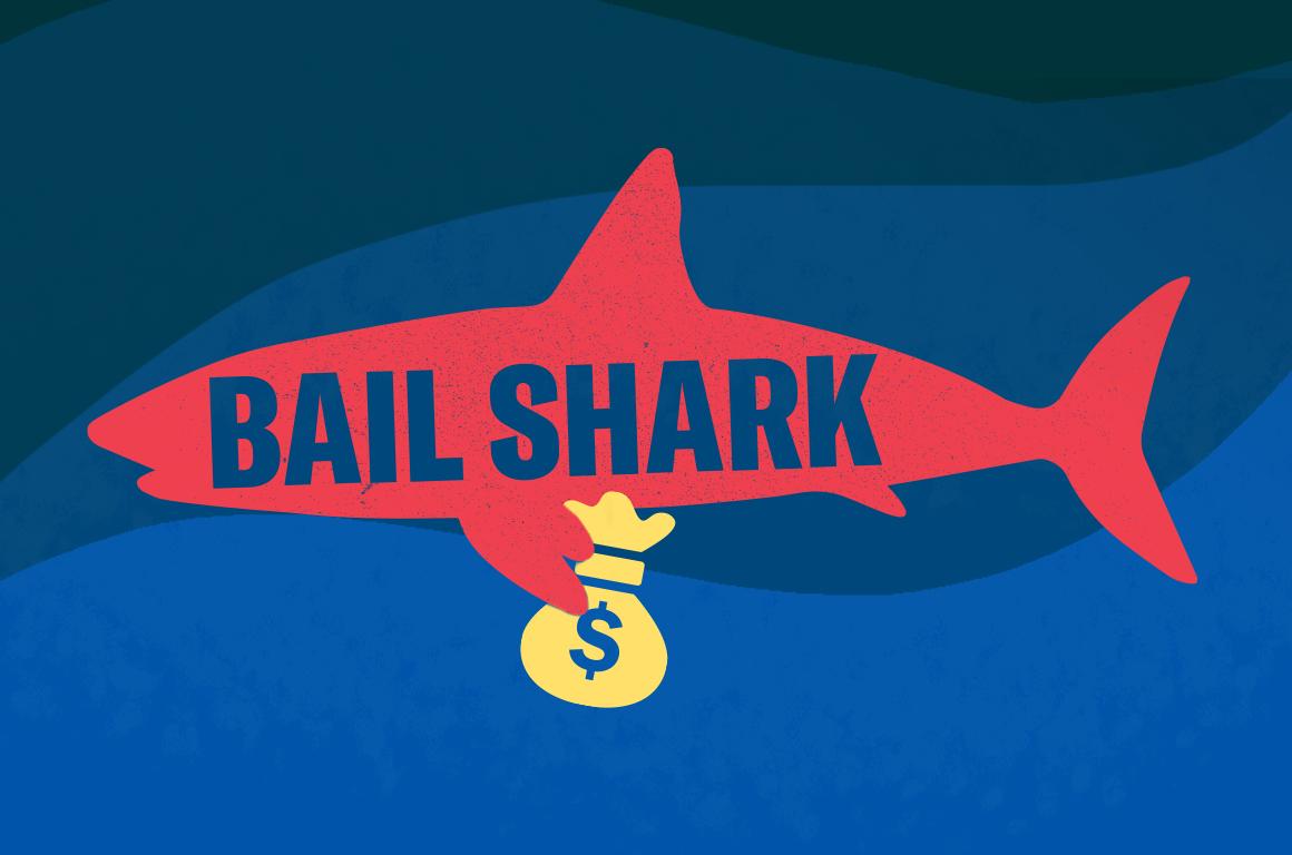 Bail Shark