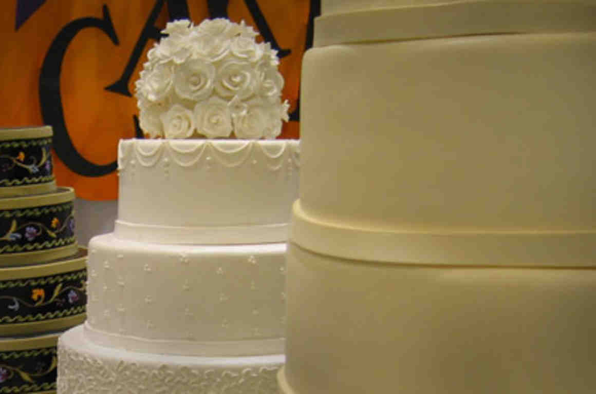 A wedding cake for fido fluffy but not for dave charlie blog weddingcake 500x280 v01g junglespirit Gallery
