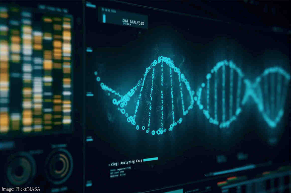DNA double helix on computer screen