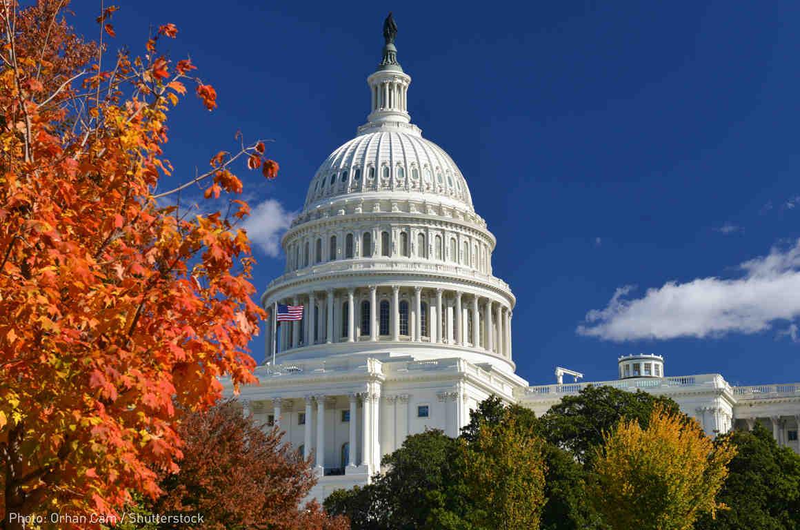 Congress fall