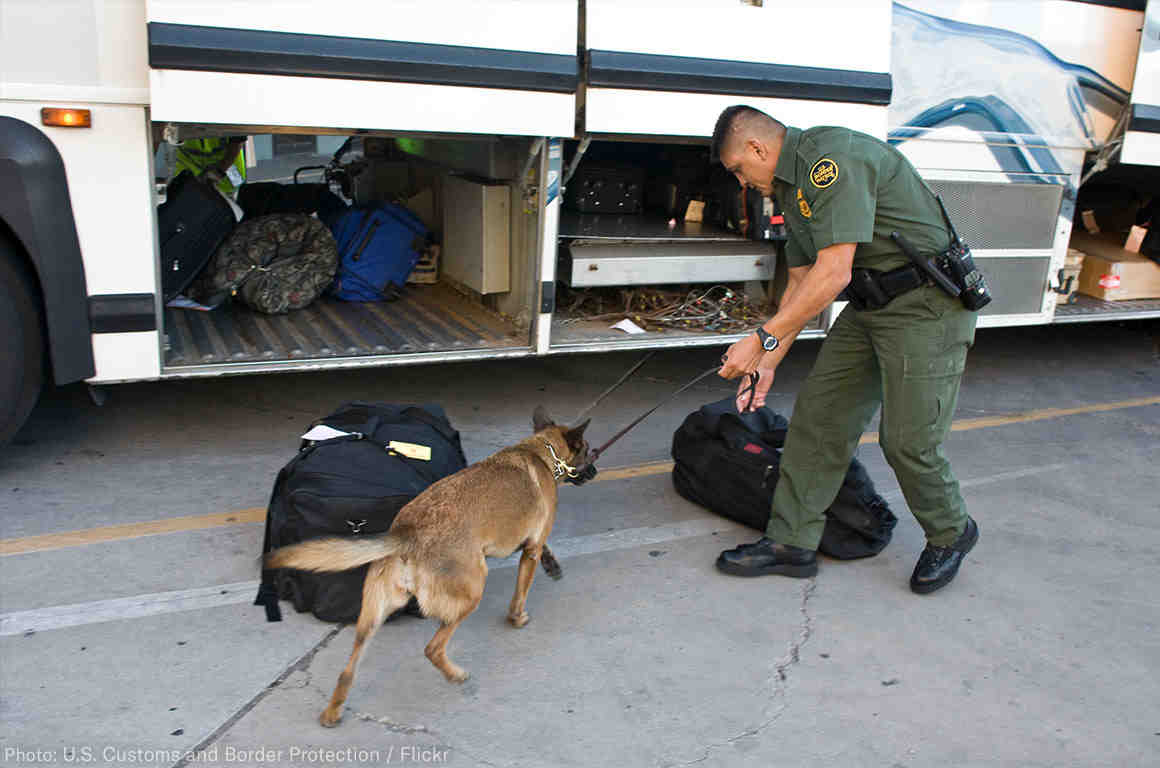 CBP Agent with a dog searching a bus