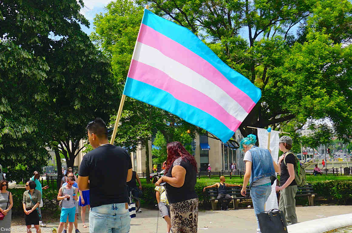 Transgender flag in a demonstration