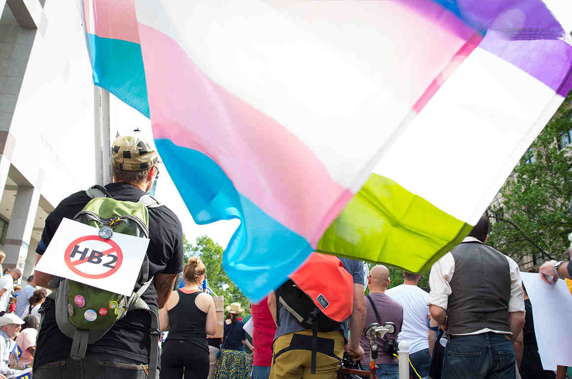 Trans Flag at Rally