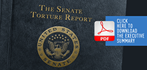 The Senate Torture Report