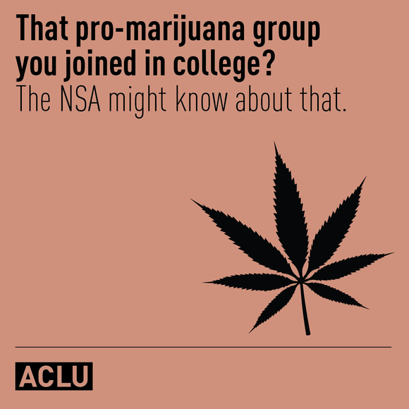 That pro-marijuana group you joined in college? The NSA might know about that.