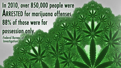 In 2010, over 850,000 people were arrested for marijuana offenses, 88% of those were for possession only.