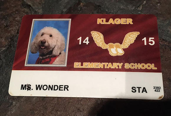 Wonder's school ID