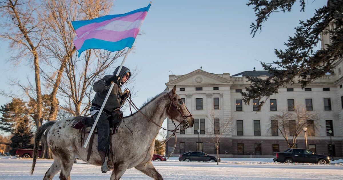 1200 630 south dakota trans flag horse